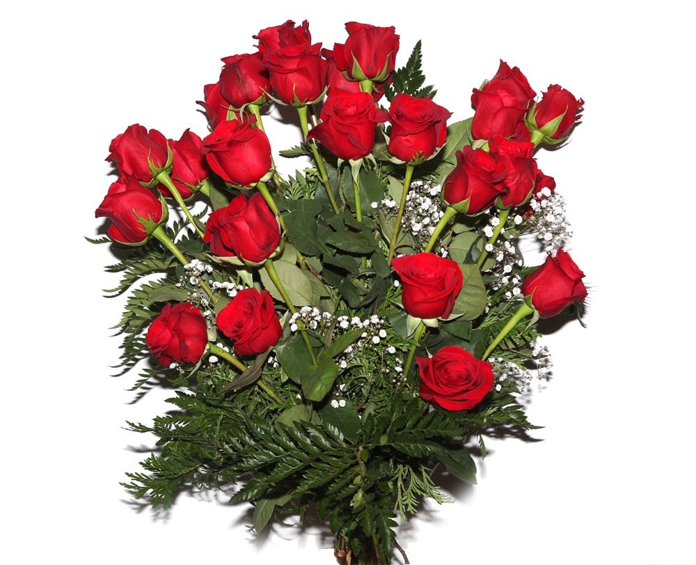 Ramo de 24 rosas rojas ramos flores naturales tienda Jardin noega tanatorio gijon esquelas