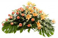 Palma flores tanatorio 12 E