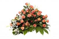 Palma flores tanatorio 10 N